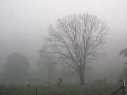 The Mist rolls in....