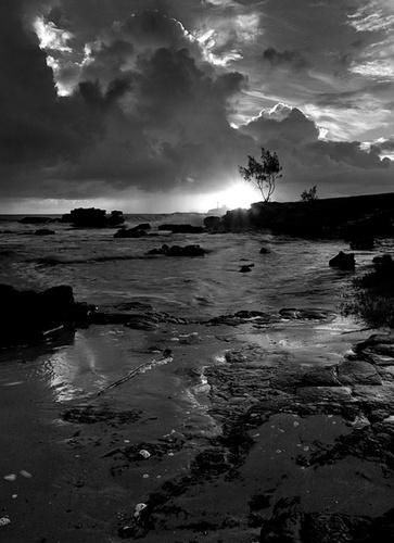 Dawn by melbrackstone