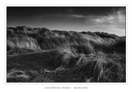 Southport Dunes - Mono #02