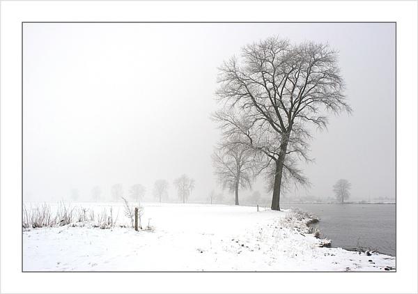 Snow Along the River Maas by conrad