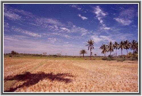 Landscape by rajasekaranamie