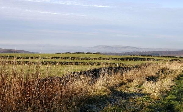 East Moor by BillS