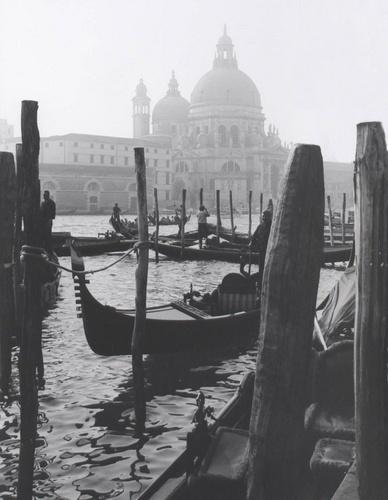 Venice by Muppet