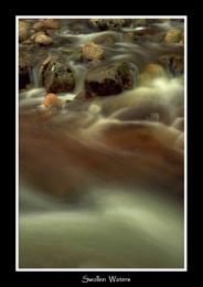 Swollen Waters