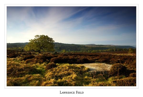 Lawrence Field by cdm36