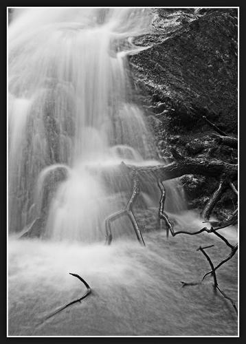 Wet Sticks v2 by Bexphoto