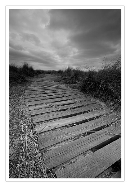 Windswept path by Pete_g