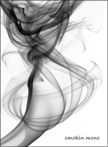 Smokin Mono by MikeMar