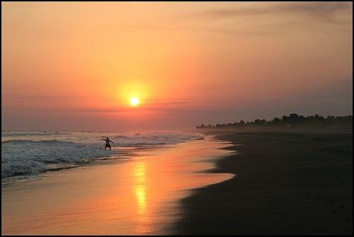 Surfers Return by martynj