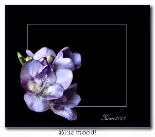 Blue Mood by mandarinkay