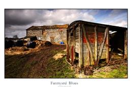 Farmyard Blues