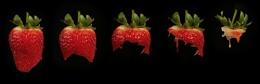 Strawberry Yum Yum!