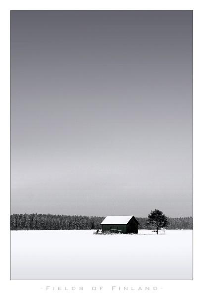 Fields of Finland by denka