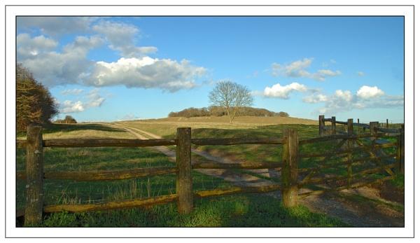 Badbury Rings by CathyT