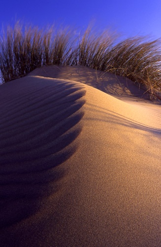 Ripples in the sand by SandyMiller