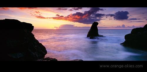 Lizard Sunrise 2 by davidentrican