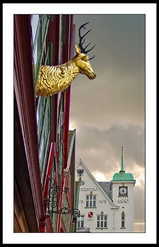 The Bryggen Stag by billbris