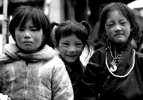 TIBETIAN GANG by gilman