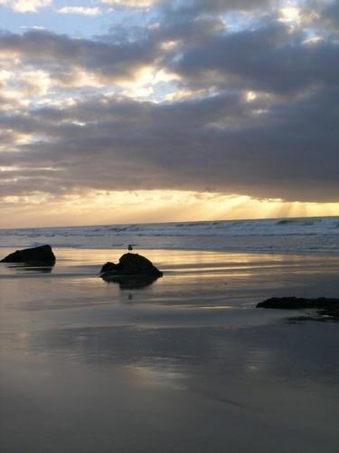 Beach by aussielass