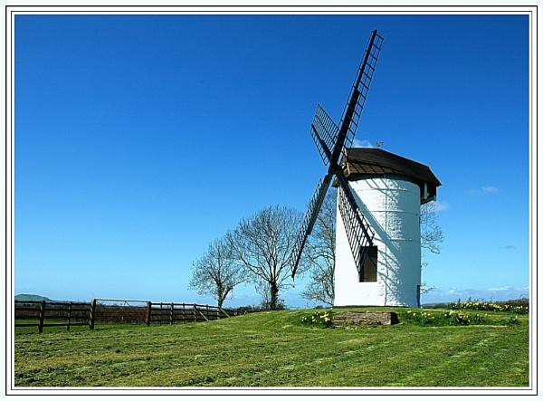 Windmill by WayneG