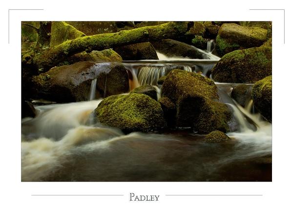 Padley by cdm36