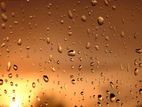 Rain of Sunshine by ian_w
