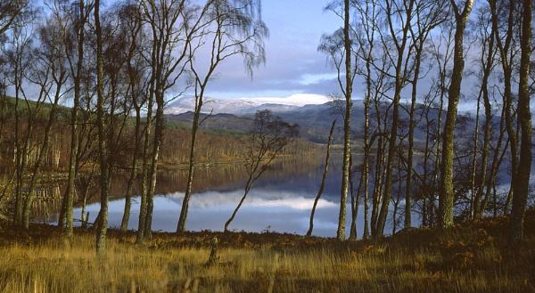 Winter Reflection by Nigel_95
