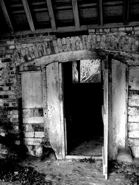 Through the door by Dinda