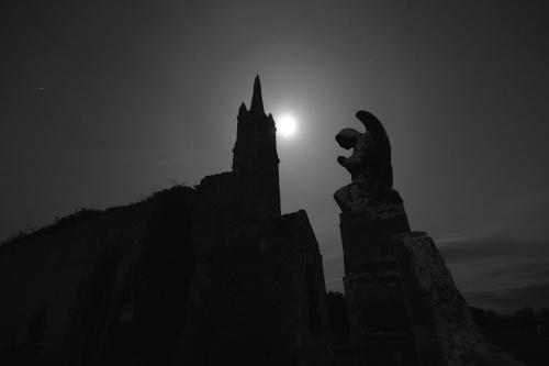 Angel of Darkness by o_neip