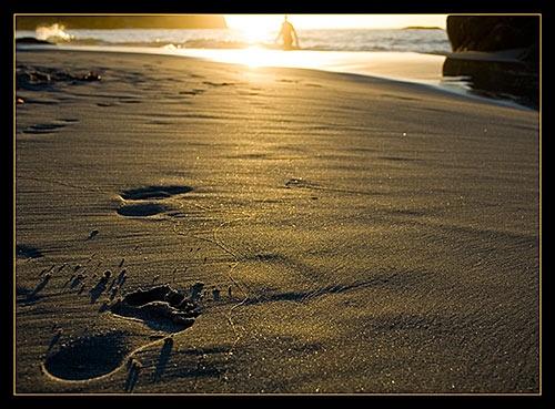 Footprints by StNick