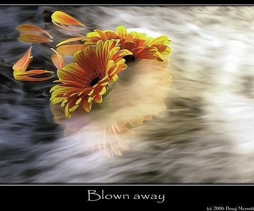 blown away by sputnki