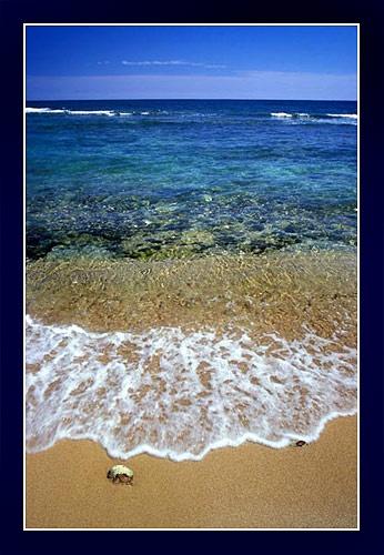 Caribbean by jond