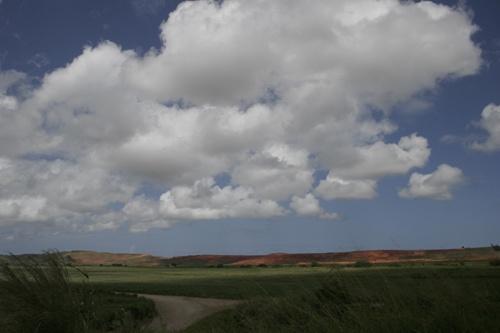 Big Sky by shellby