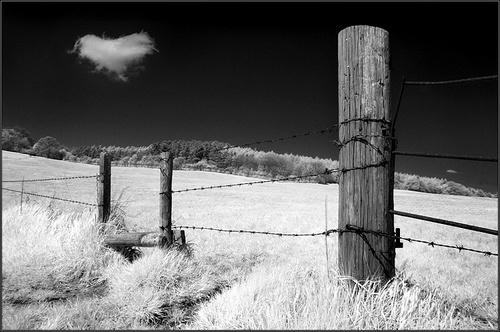 I Love Landscapes by rojo-uk