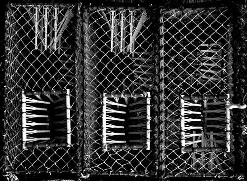 Baskets by martinduke