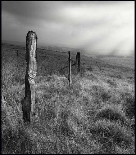 Mono Moor by markstokes