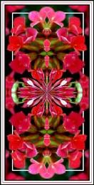 Kaleid-A-Flower