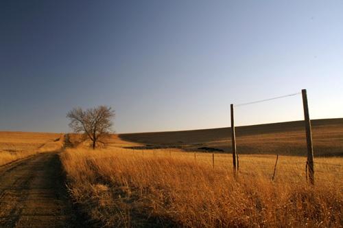 Alone on the prairie by jayhawk2000