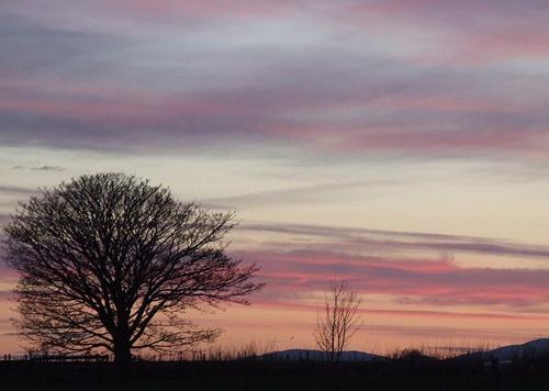 Spring Sunset by amwaluk