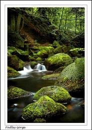 Padley Gorge #1