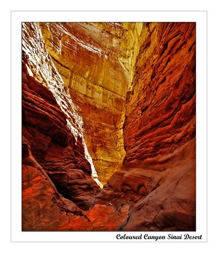 Coloured Canyon Sinai Desert by JCowlan