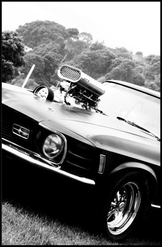 Mach1 Mustang by MattRW