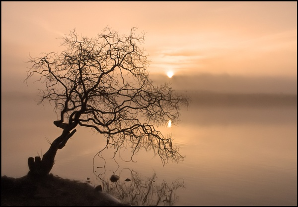 Early Morning by motman