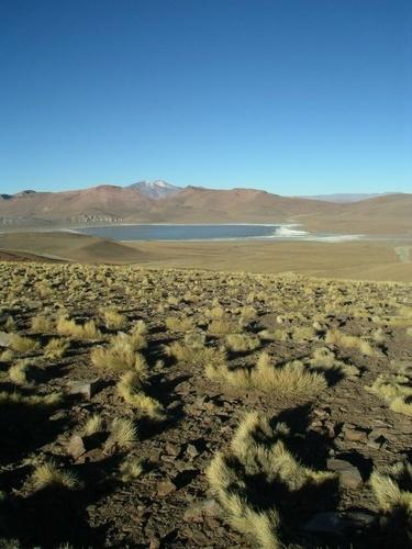 Bolivian Lagoon by Hamish_Dee