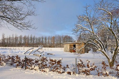 Sunny winter by plstsn