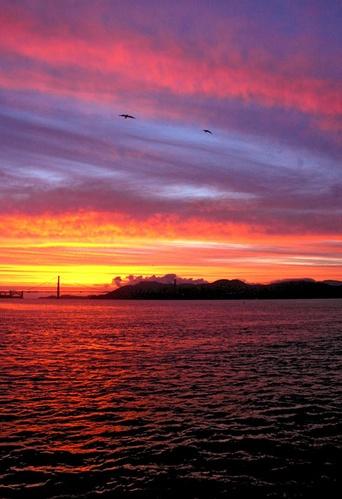 Golden sunset by Taran