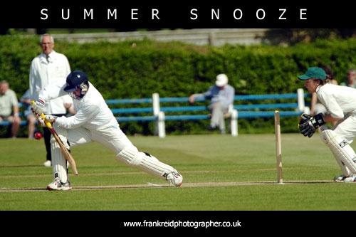Summer Snooze by Frank_Reid