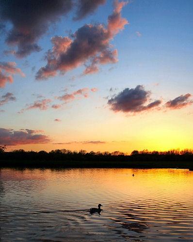 sunset lake by AntonyB