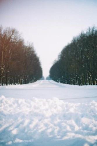 Winter Wonderland by elmo