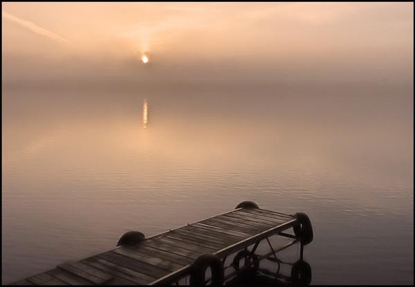 Misty Morning by motman